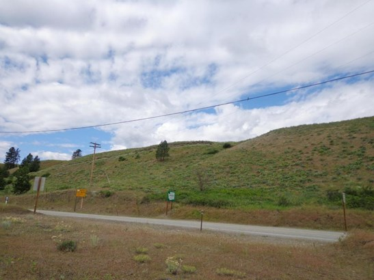 Lot 4 Hwy 21, Danville, WA - USA (photo 5)