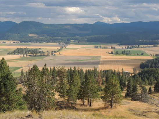 Xxxx Marble Valley Basin Rd, Addy, WA - USA (photo 1)