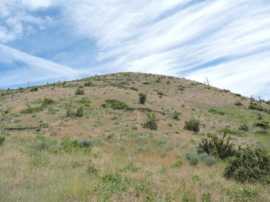 10650 Mud Creek Rd, Entiat, WA - USA (photo 5)