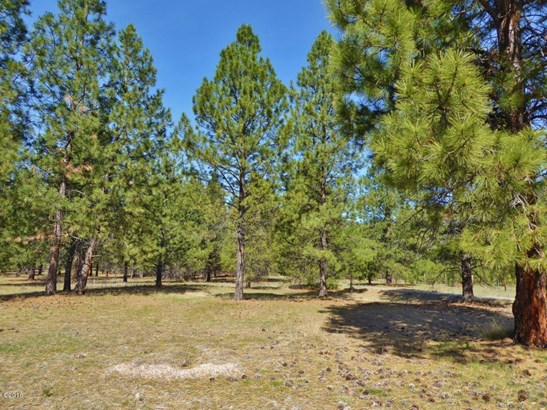 Lot 48 Turah Meadows, Clinton, MT - USA (photo 5)