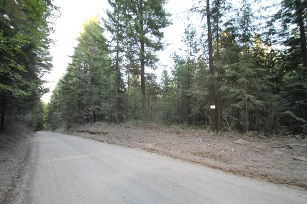 Lot 2 Seneacquoteen Dr, Sagle, ID - USA (photo 4)