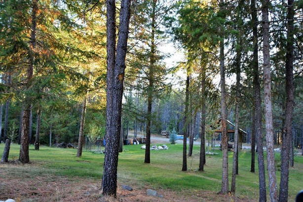 Tr 250 Newman Drive, Spirit Lake, ID - USA (photo 1)