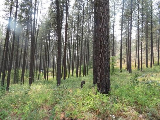 397 Silver Creek Rd, Keller, WA - USA (photo 2)