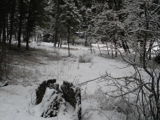 Nhn East Fork Road, Sula, MT - USA (photo 5)