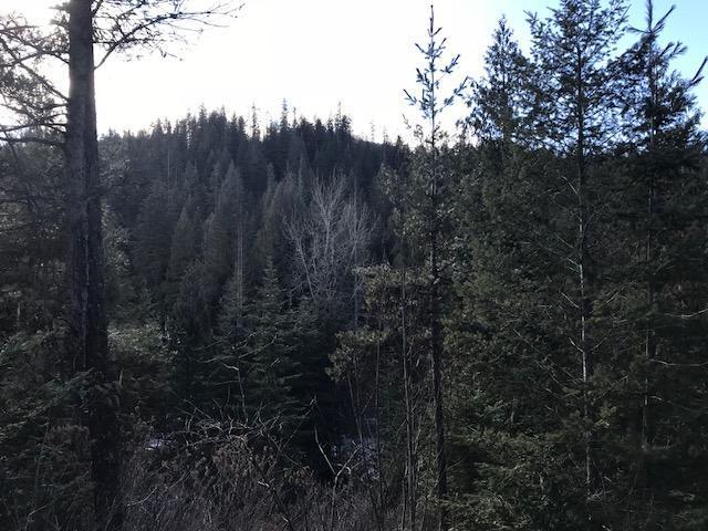 3794 S Elk, Harrison, ID - USA (photo 5)