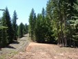 Lot 12 Bland Road, Lenore, ID - USA (photo 1)