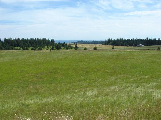 Tbd Ceres Drive, Lenore, ID - USA (photo 3)