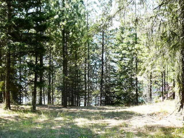Nka N Bashert Trail, Hayden Lake, ID - USA (photo 3)