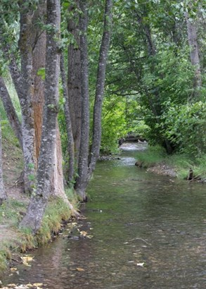 3275 B Deep Lake Boundary Rd, Colville, WA - USA (photo 4)