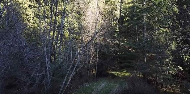 Xxx Mt Spokane Park Dr, Mead, WA - USA (photo 2)