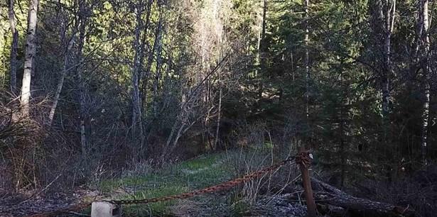 Xxx Mt Spokane Park Dr, Mead, WA - USA (photo 5)