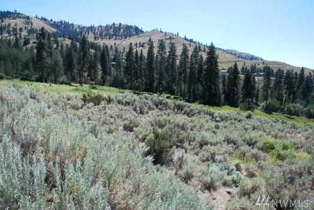 47 Corral Creek Dr, Orondo, WA - USA (photo 3)