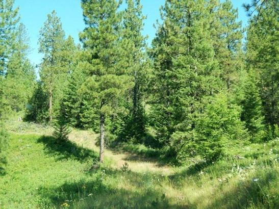 Tbd Silver Creek Rd, Keller, WA - USA (photo 3)