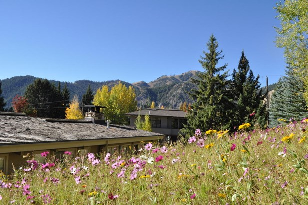 580 N Spruce Ave, Ketchum, ID - USA (photo 1)