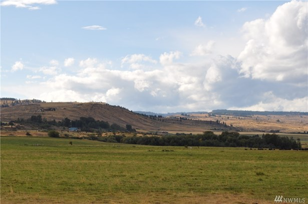 131 Robinson Canyon Rd, Ellensburg, WA - USA (photo 4)