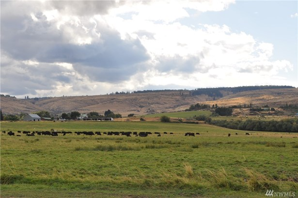 131 Robinson Canyon Rd, Ellensburg, WA - USA (photo 5)