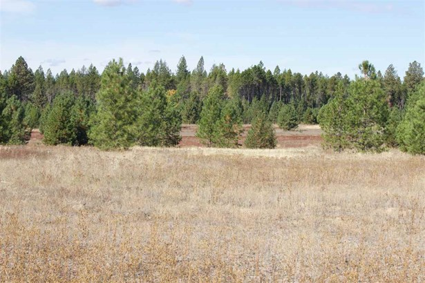 00 Colville Rd F, Deer Park, WA - USA (photo 5)
