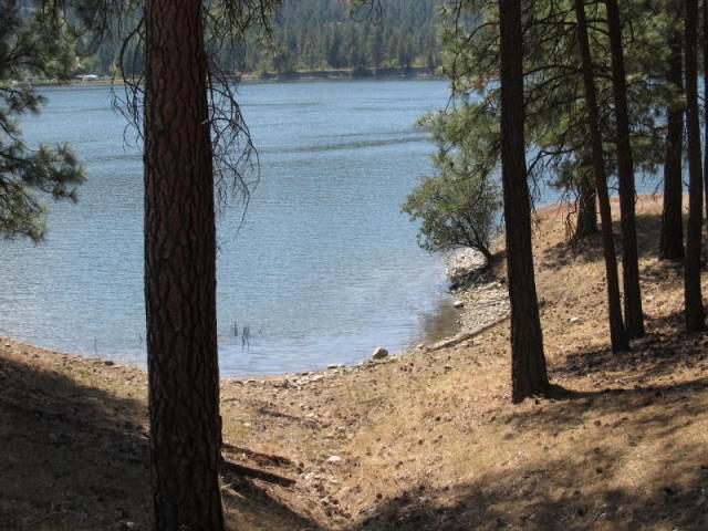 2034 Ray Anderson Rd, Kettle Falls, WA - USA (photo 3)