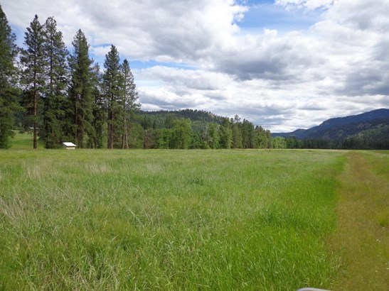 000 Lot 4  Pine Creek Ln, Curlew, WA - USA (photo 2)