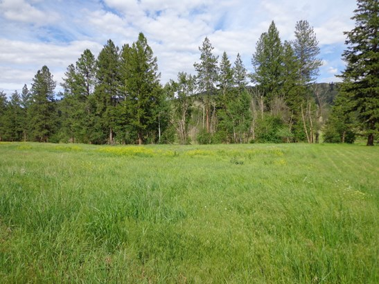 000 Lot 4  Pine Creek Ln, Curlew, WA - USA (photo 3)