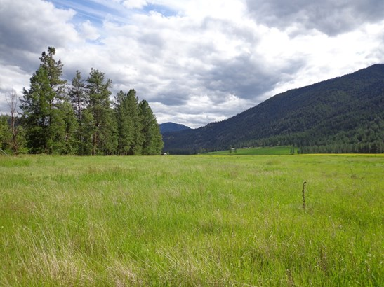 000 Lot 4  Pine Creek Ln, Curlew, WA - USA (photo 4)