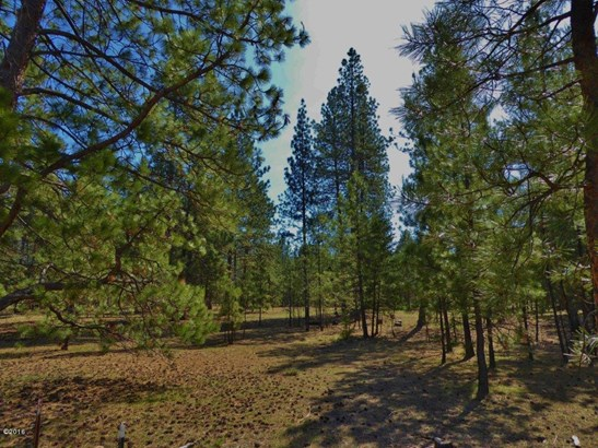 Lot 50 Turah Meadows, Clinton, MT - USA (photo 1)