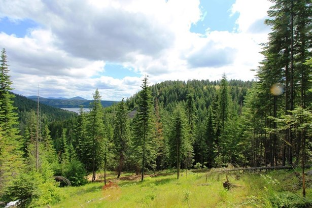 Nna Tamarack Ln, Worley, ID - USA (photo 3)
