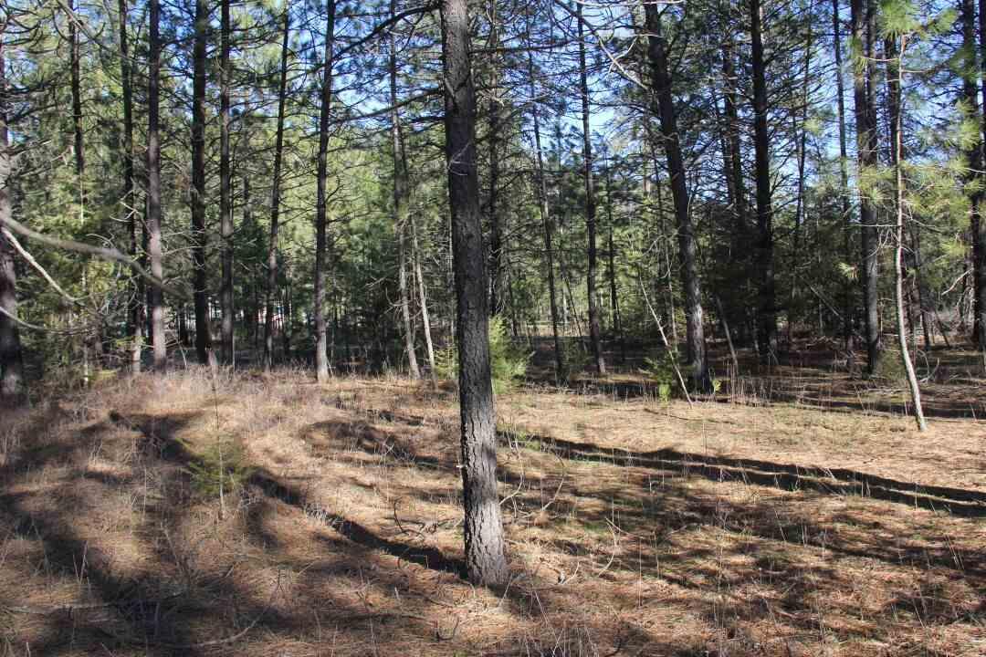 38xx Agar Rd, Deer Lake, WA - USA (photo 3)