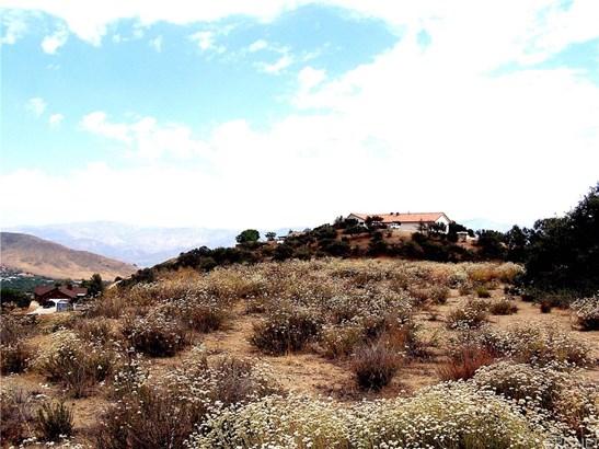Single Family Residence - Agua Dulce, CA (photo 4)