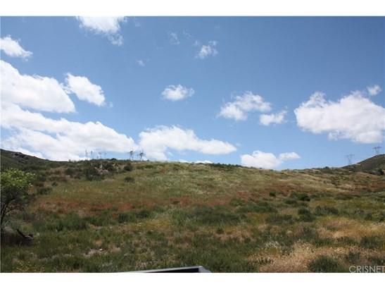 Land/Lot - Leona Valley, CA (photo 1)