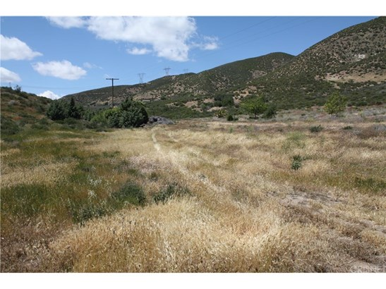 Land/Lot - Leona Valley, CA (photo 2)
