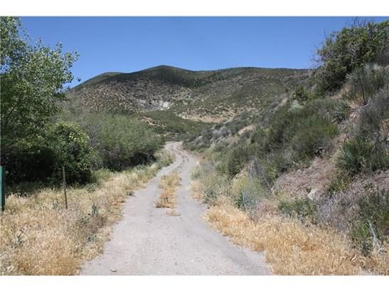 Land/Lot - Leona Valley, CA (photo 3)