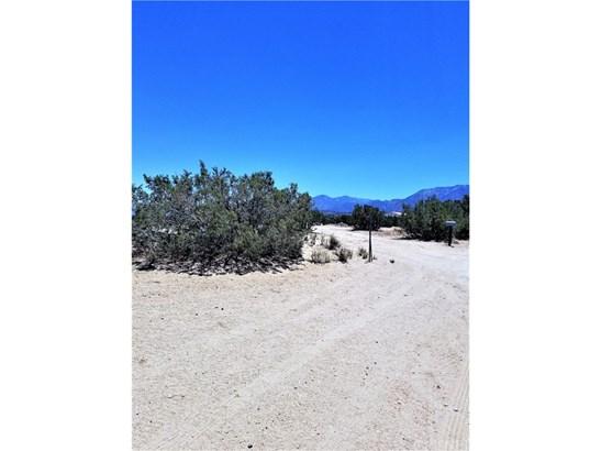 Land/Lot - Pearblossom, CA (photo 3)