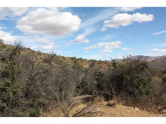 Land/Lot - Acton, CA (photo 4)