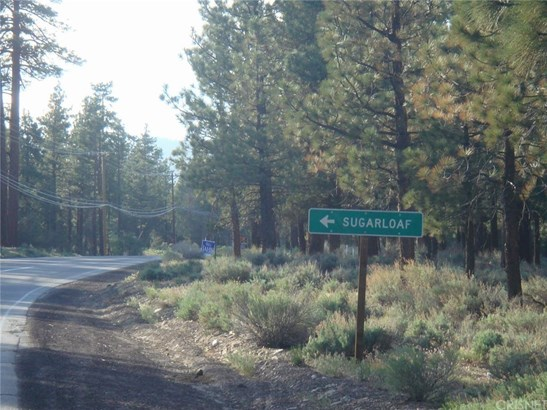Land/Lot - Big Bear, CA (photo 4)