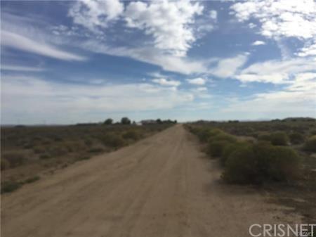 Land/Lot - Antelope Acres, CA (photo 1)