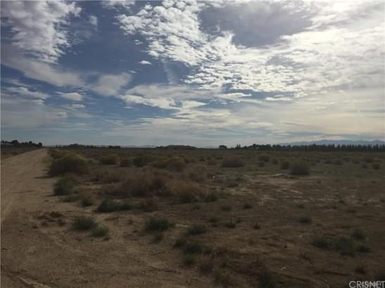 Land/Lot - Antelope Acres, CA (photo 5)