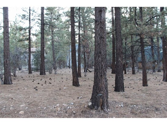 Land/Lot - Big Bear, CA (photo 1)