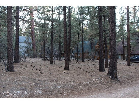 Land/Lot - Big Bear, CA (photo 2)
