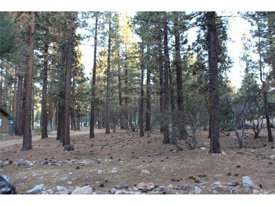 Land/Lot - Big Bear, CA (photo 3)