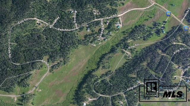 Lot 17 Black Horse Ii At Stagecoach, Oak Creek, CO - USA (photo 4)