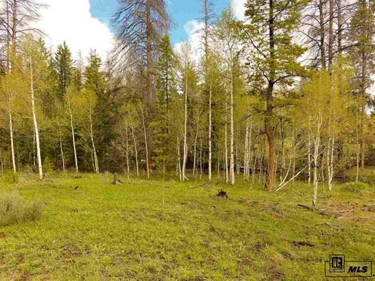 Lot 17 Black Horse Ii At Stagecoach, Oak Creek, CO - USA (photo 5)