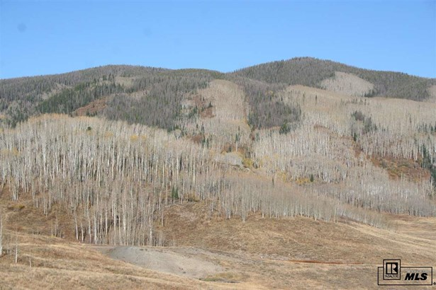 Tbd Forest Service Road 409, Clark, CO - USA (photo 5)