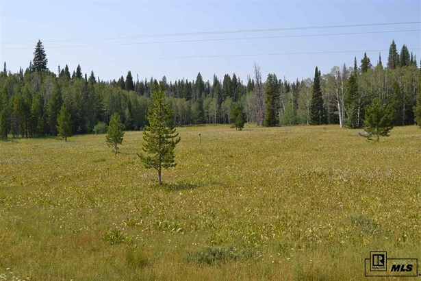 60130 Crazy Horse Way, Clark, CO - USA (photo 1)