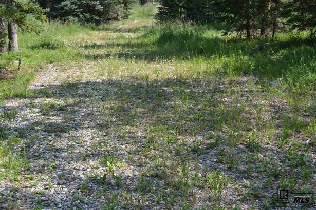 60130 Crazy Horse Way, Clark, CO - USA (photo 3)