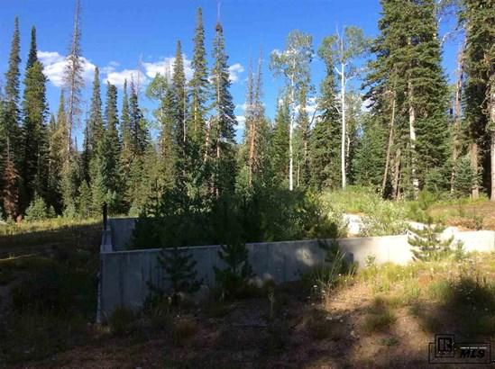 60130 Crazy Horse Way, Clark, CO - USA (photo 5)