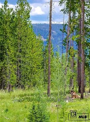 32850 Colt Trail, Oak Creek, CO - USA (photo 4)