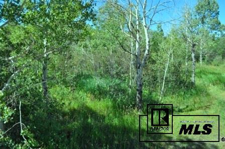 22865 Broken Talon Way, Oak Creek, CO - USA (photo 3)