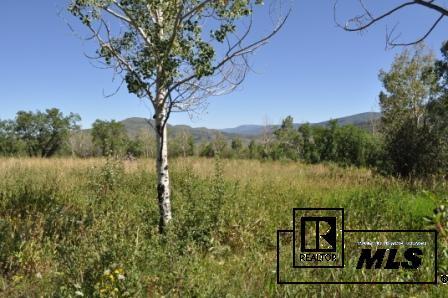 22865 Broken Talon Way, Oak Creek, CO - USA (photo 4)