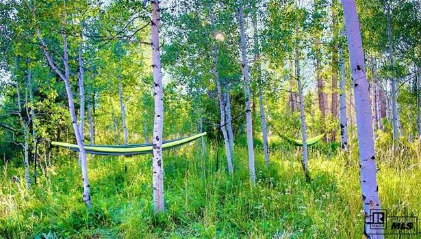 32930 Colt Trail, Oak Creek, CO - USA (photo 2)